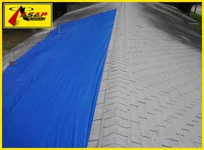 asphalt shingles with a tarp over them